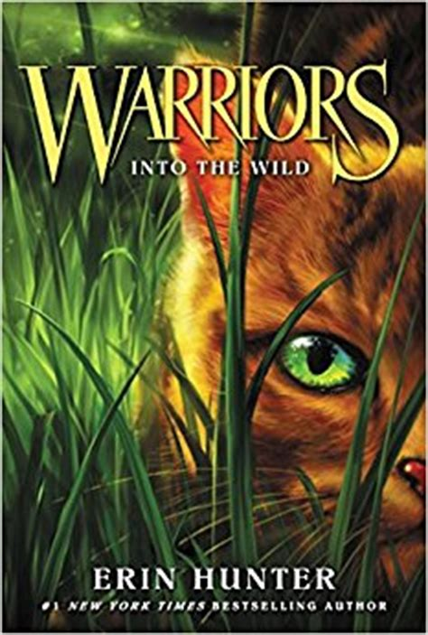 warriors 1 into the warriors the prophecies begin