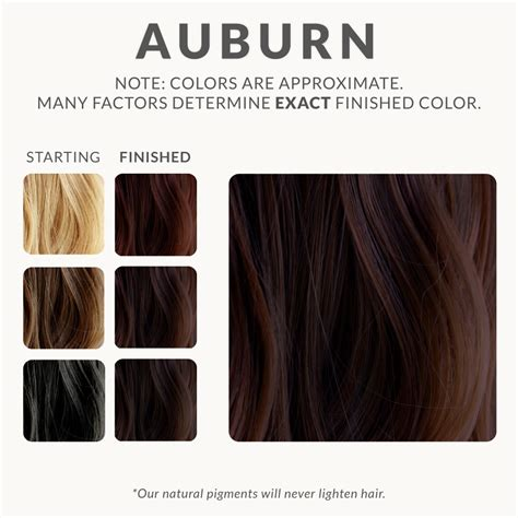 pure henna hair dye henna color lab henna hair dye auburn henna hair dye henna color lab 174 henna hair dye