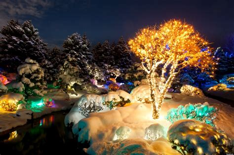 Denver Botanic Gardens Blossoms Of Light Blossoms Of Light White A 1940s And More Things To Do In Denver