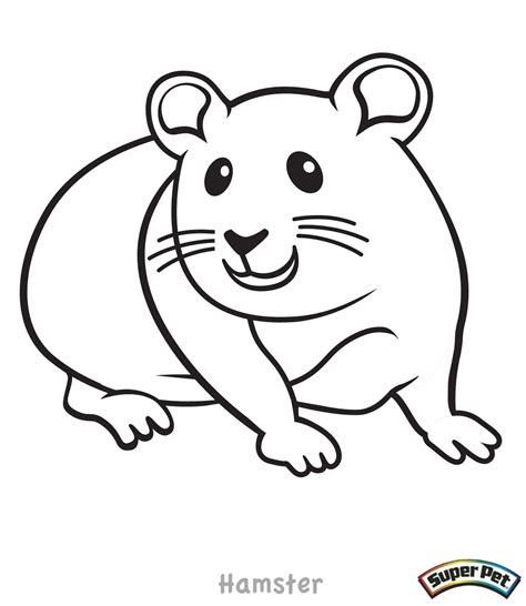 Coloring Page Hamster by Hamster Coloring Pages To And Print For Free