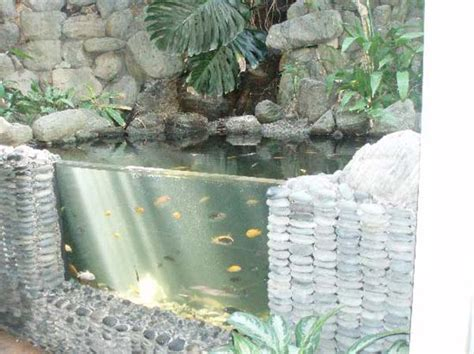 backyard aquarium 21 small garden backyard aquariums ideas that will