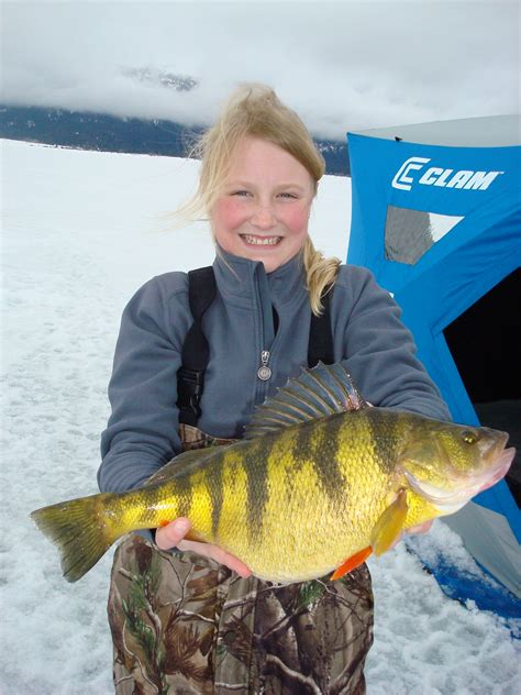 Iowa Records Idaho Ices World Record Perch In Fisherman