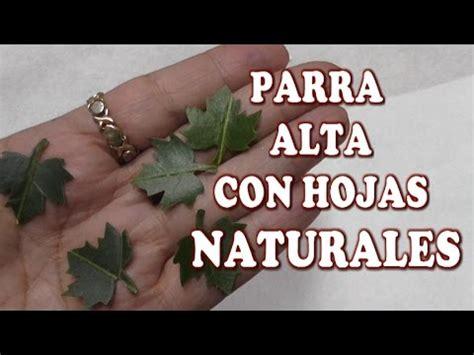 diy emparrado de uvas  hojas naturales  el pesebre