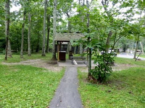 Lewis Mountain Cabins by View Of Cabin S Bbq Picnic Area Picture Of Lewis