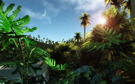 Wallpaper 3d Jungle | jungle wallpapers wallpaper cave