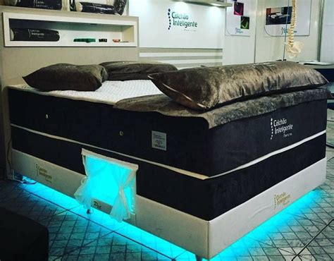 bed with built in dog bed dreamy pet bed nook lets fluffy sleep inside your mattress