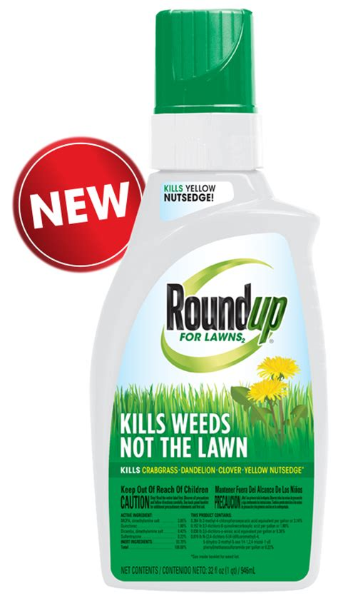 roundup for lawns roundup for lawns 2 grass friendly killer