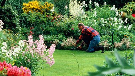 Landscaper Tips 13 Things Your Landscaper Won T Tell You Expert