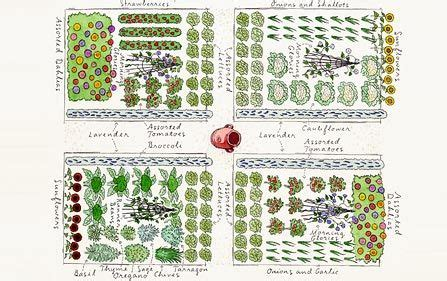 garden plan for a sustainable homestead homesteading self sufficiency pinterest gardens