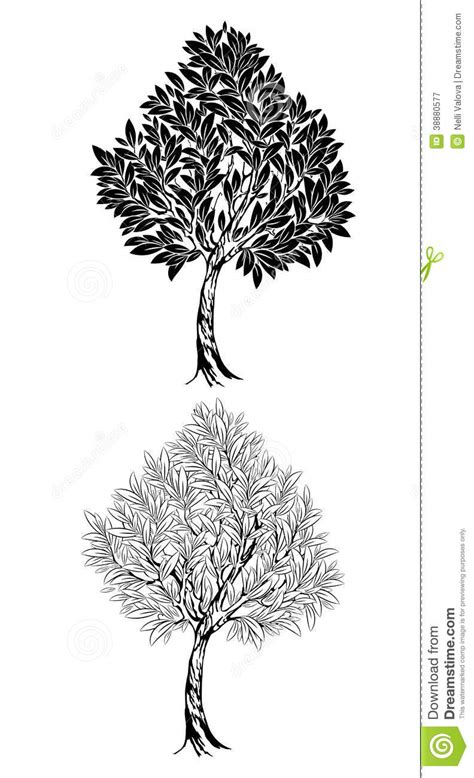 Two young contour tree stock vector. Illustration of