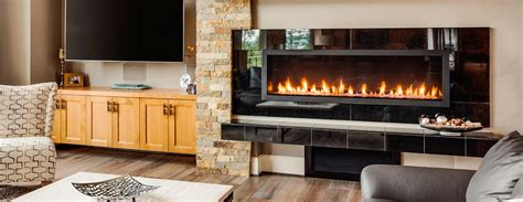 Fireplace Doors Chicago by Fireplace Doors Naperville Il Fireplaces