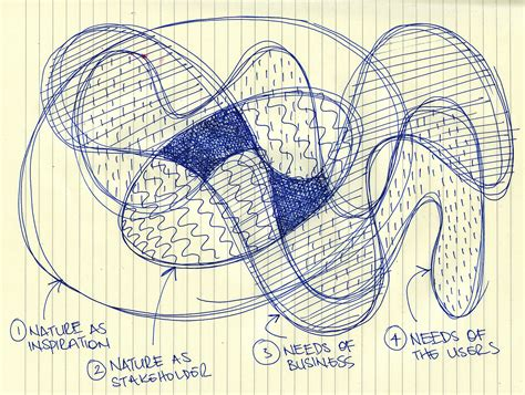 layout sketch definition biomimicry and design definition bouncing ideas