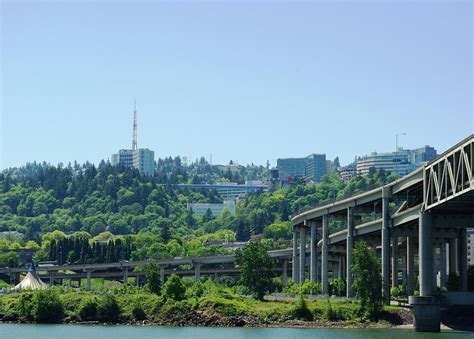 L Portland by Portland Scientists Awarded 3m For Tuberculosis Vaccine