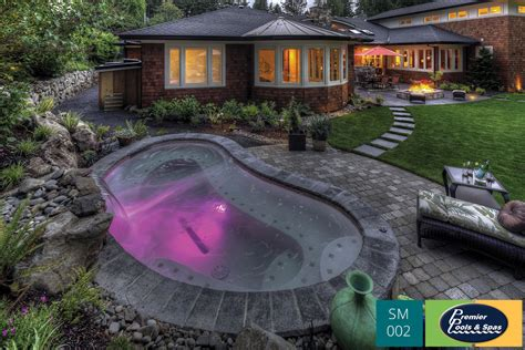 small pools and spas small pools spools premier pools spas