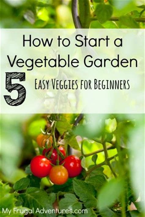 372 Best Images About Yard Flower Bed Ideas On Pinterest Starting A Fruit And Vegetable Garden