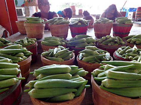 home decor company picks dallas farmers market for day trips the dallas farmers market offers up a foodie s