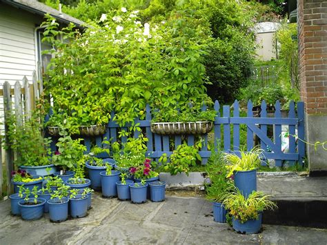 allestire un giardino come allestire un giardino guida giardino with come