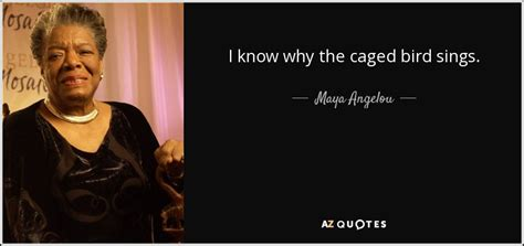 i why the caged bird sings book report angelou quote i why the caged bird sings
