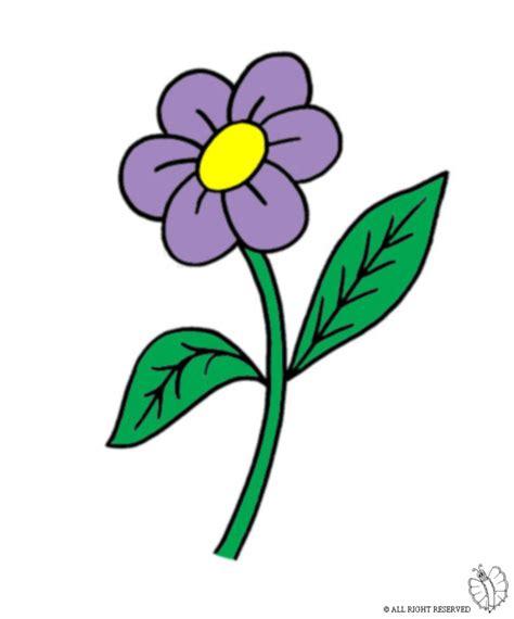 margherita fiore disegno 15 fiore margherita colorata disegno