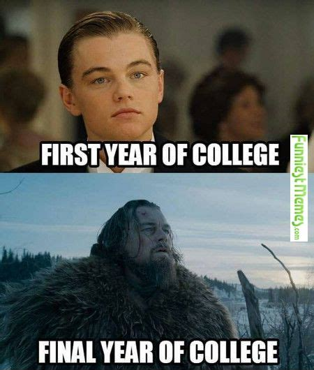 Memes Funniest - 25 best funny college memes ideas on pinterest funny