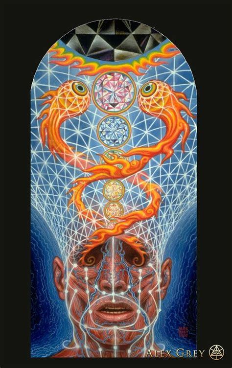 alex grey visionary artist pisatahua