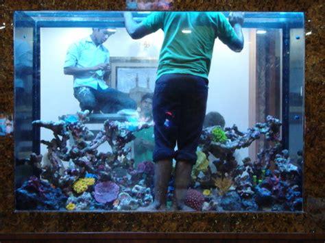 aquarium design india chennai tamil nadu spa aquarium in chennai tamil nadu india aquarium