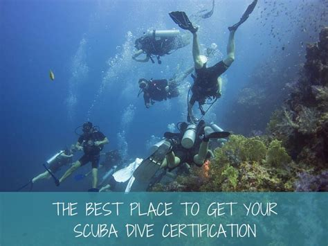 dive certification the best place to get your scuba dive certification more