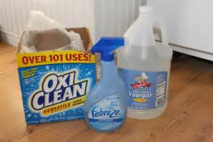 Best Rug Shampooer For Pet Odors Shampoo Carpet With Vinegar Video Search Engine At