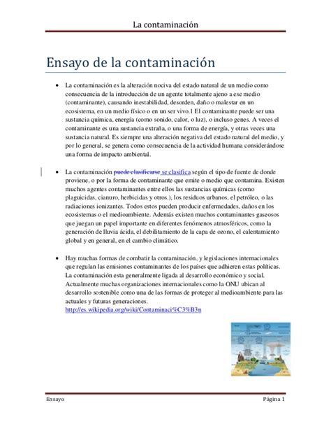 el blog de patricia ilusi 243 n 243 ptica ejemplos de contaminacin contaminaci 243 n visual