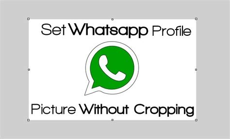 how to set your whatsapp profile picture in full size 2020tech how to set whatsapp profile picture without