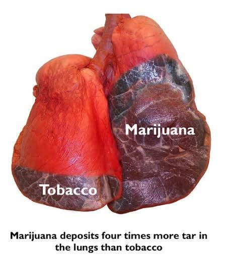 Cannabis Detox Stomach Hurts by Mr President Barack Obama Wants 2 Stop Selling