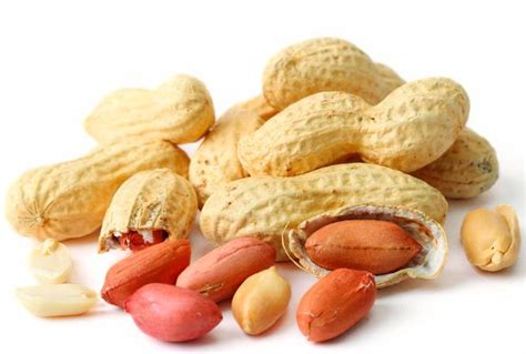 peanuts pictures food fact 8 peanuts can your mind the
