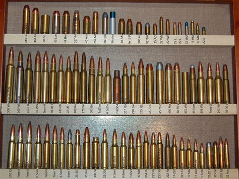 ammo and gun collector some ammo collections pictures
