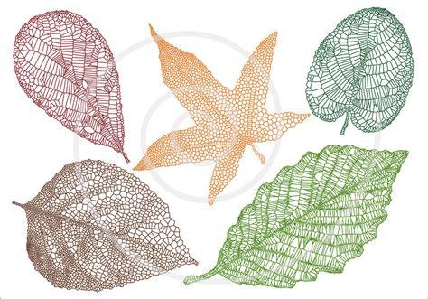 printable skeleton leaves autumn leaves digital clip art skeleton leaf silhouette