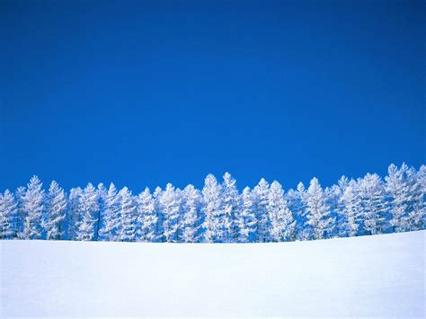 desktop themes snow wallpapers snow desktop wallpapers and backgrounds