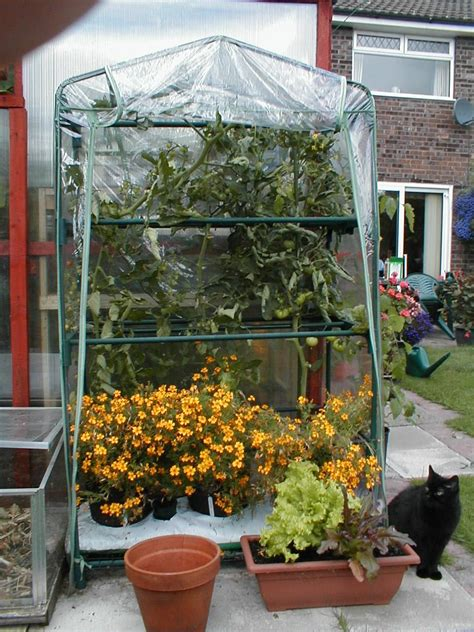 Greenhouse Patio by Portable Greenhouses Patio And Allotment Greenhouses