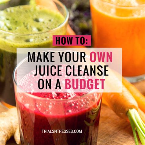 Make Your Own Detox by How To Make Your Own Juice Cleanse On A Budget Trials N