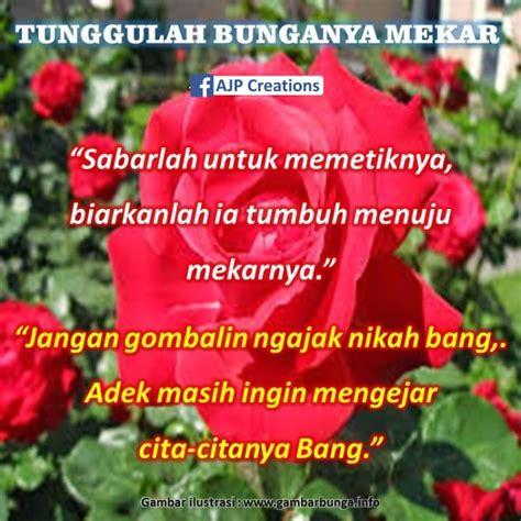 gambar bunga  kata mutiara kumpulan kata kata