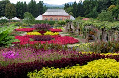 biltmores summertime gardens   biltmore
