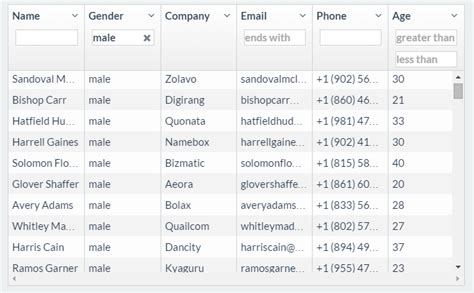 Smart Table Angular by 5 Best Angularjs Grid Table Plugin Exles With Demos