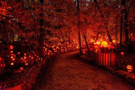 Ordinary Christmas Light Show Dallas #6: Pumpkin-Trail.jpg