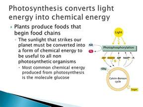 topic 3 8 photosynthesis ppt