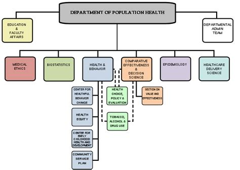 organizational chart department of population health