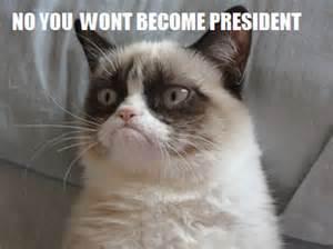 Grumpy cat meme i made my crazy life