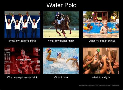 Polo Meme - water polo meme water polo 101 pinterest