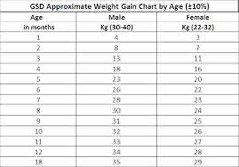 german shepherd weight chart and height nwk9com size of gsd pups page 1