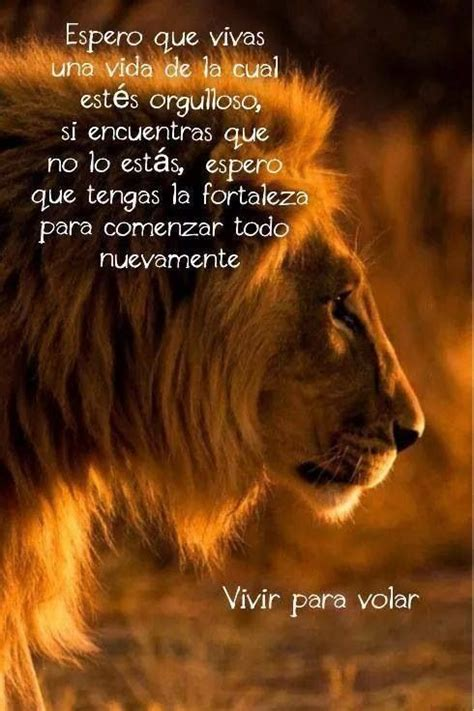 imagenes d leones con frases vivir para volar reflexiones pinterest beautiful