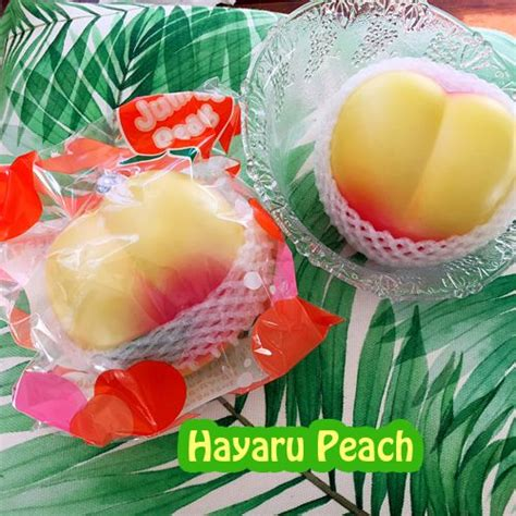 Hayaru Squishy 1000 images about squishies on macaroons kawaii and kawaii