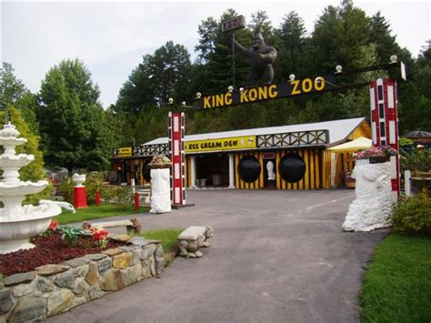 visit cherokee county nc murphy nc and andrews nc court finally closes roadside zoo operation in murphy nc