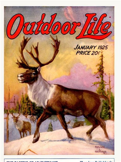 outdoor life the illustrator 28 best howard l hastings images on pinterest